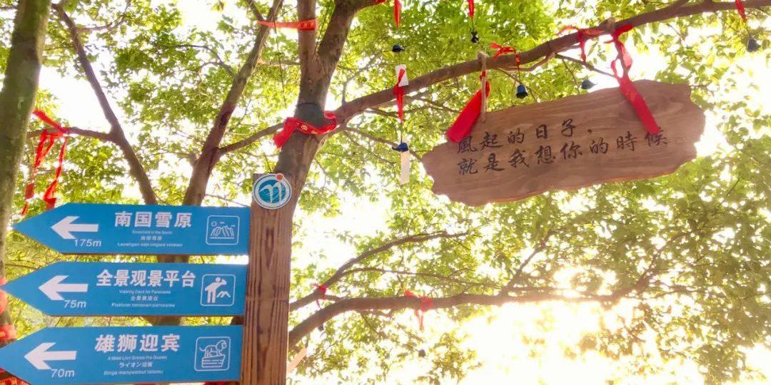 七夕佳节,爱在玉石林,和你一起有约